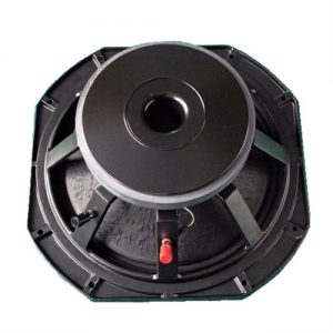 Woofer AA-10MB300